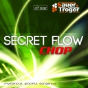 "Sauer & Tröger "" Secret Flow """